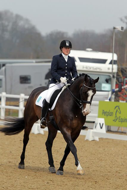 Welcome on board, Bert (Roberta) Sheffield – Canadian Para Dressage Team