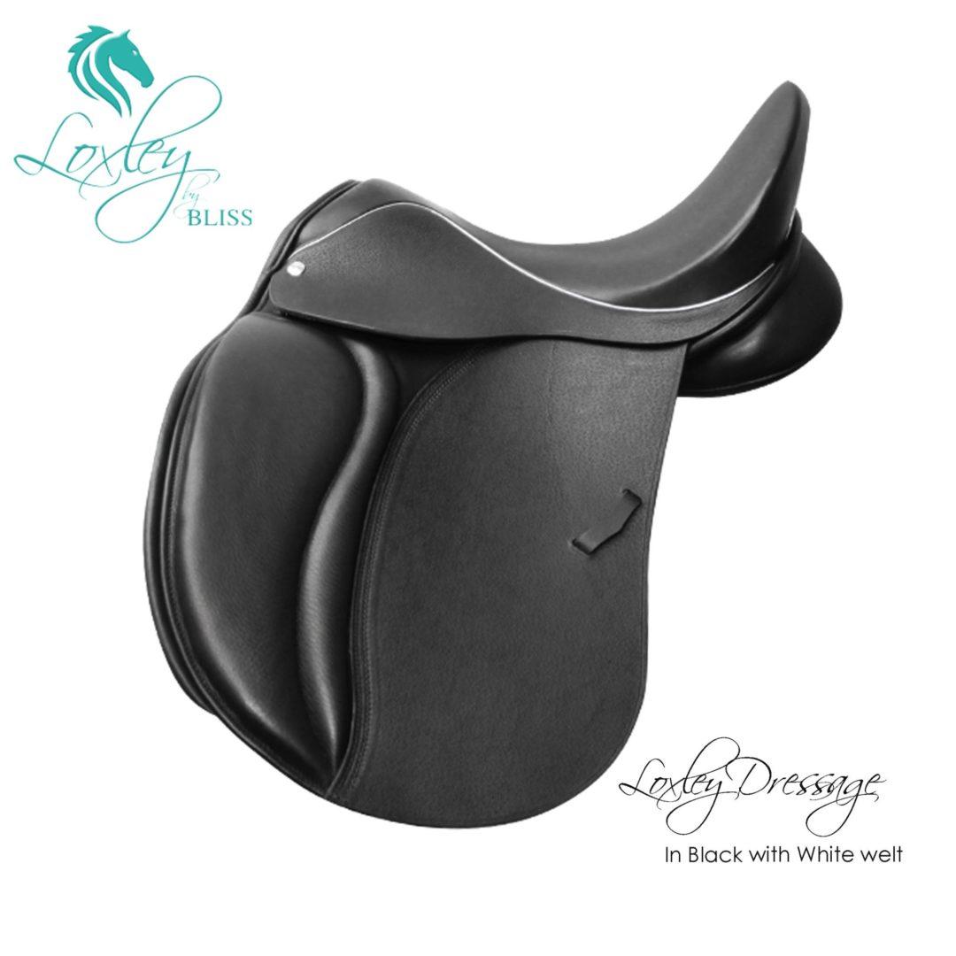 1 aaLoxley Pony Dressage Black white