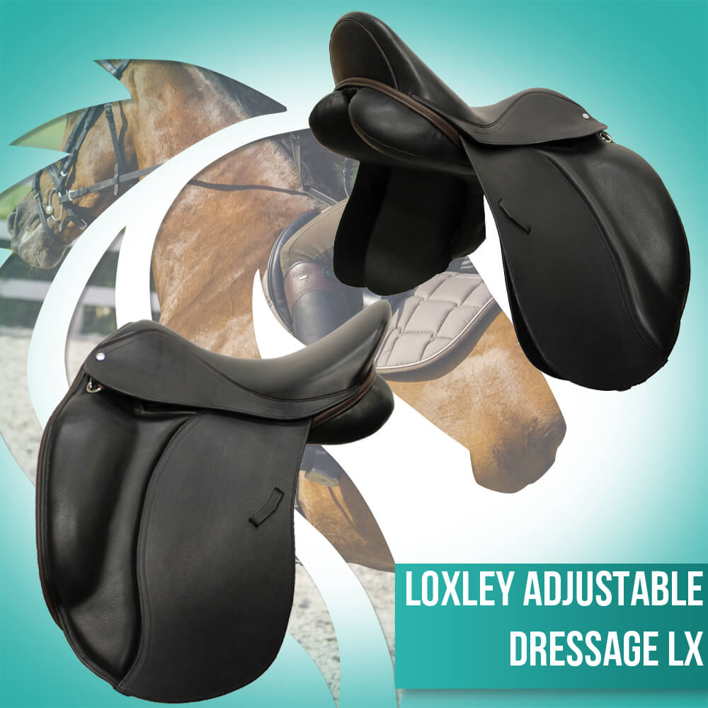 Loxley Dressage LX black & cocoa adjustable