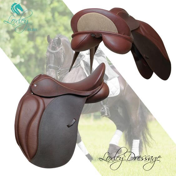 Loxley Dressage two tone