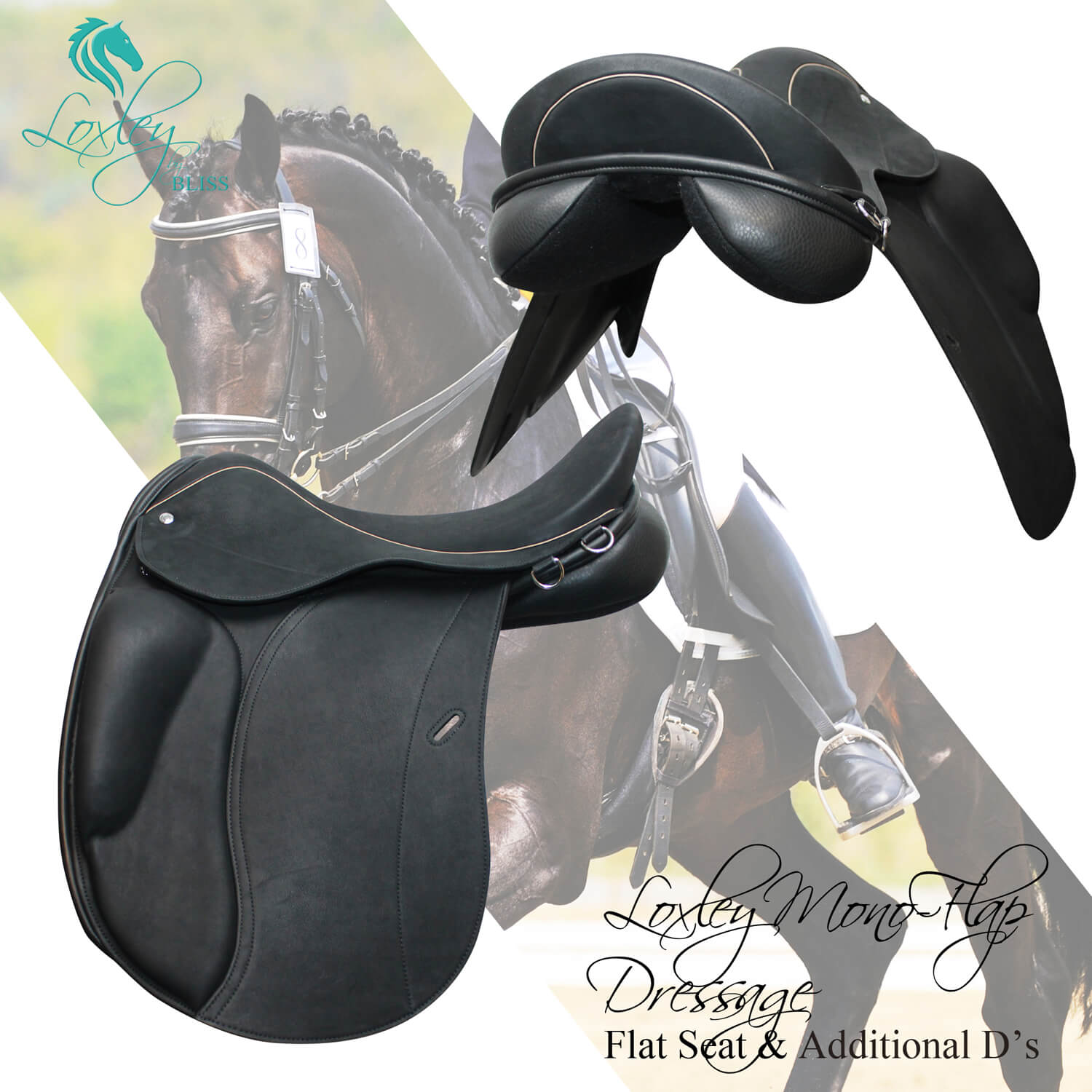 14135 Loxley Dressage Mono flap fb