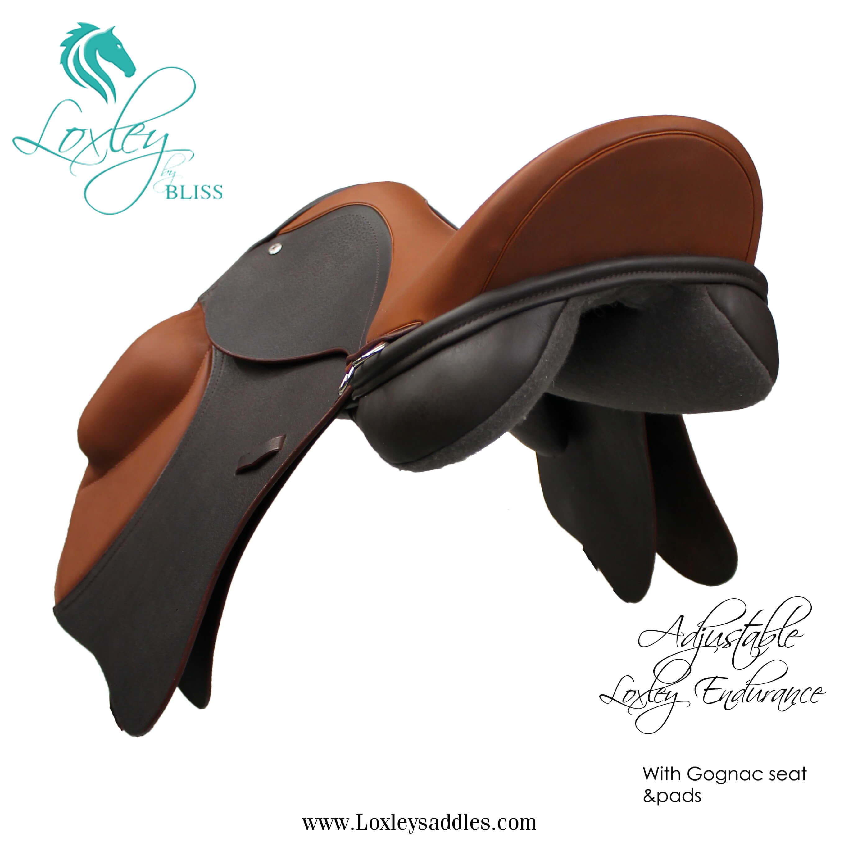 1A feature image Loxley endurance saddle 035 - side 34 Template