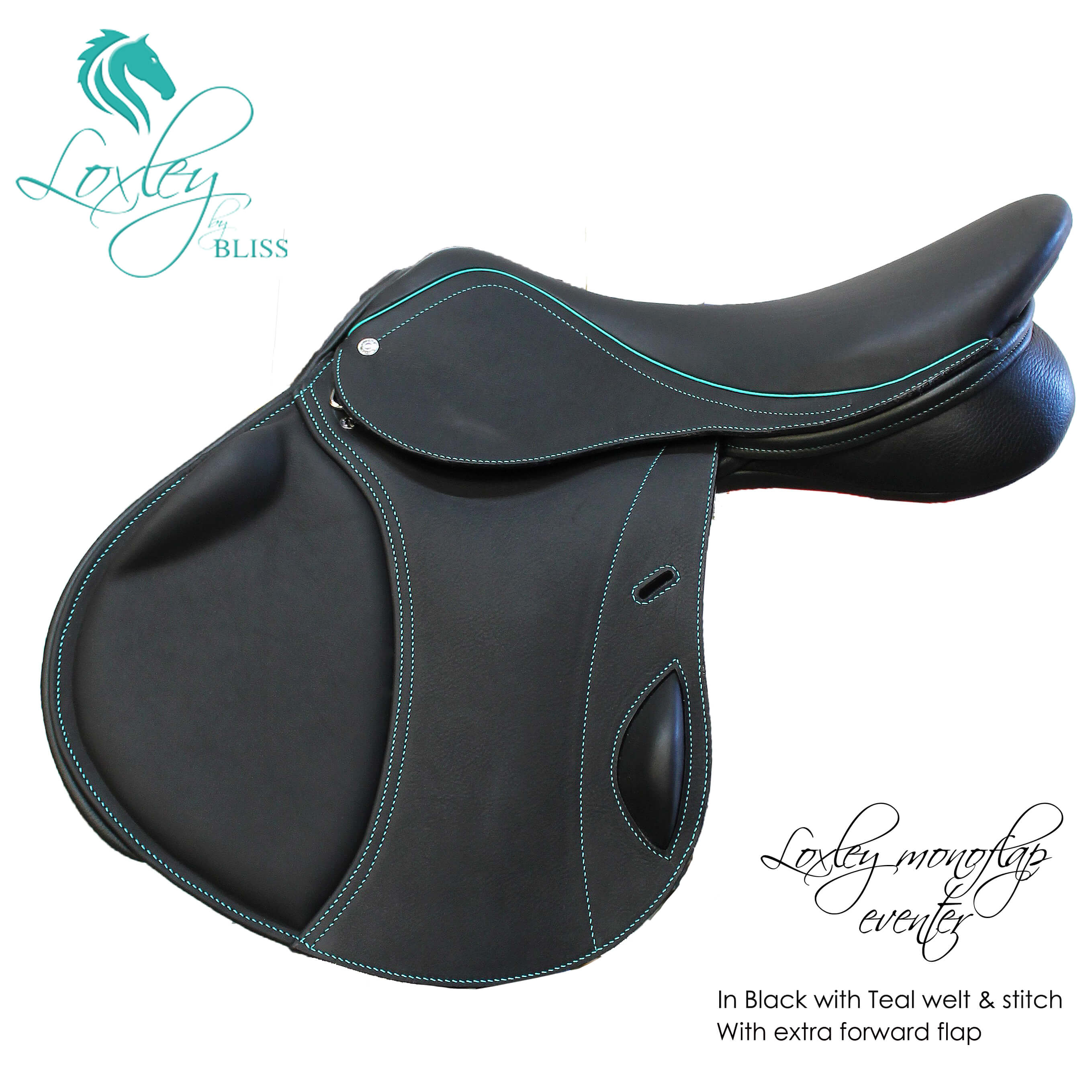 1AA Loxley Eventer Mono Black & teal copy