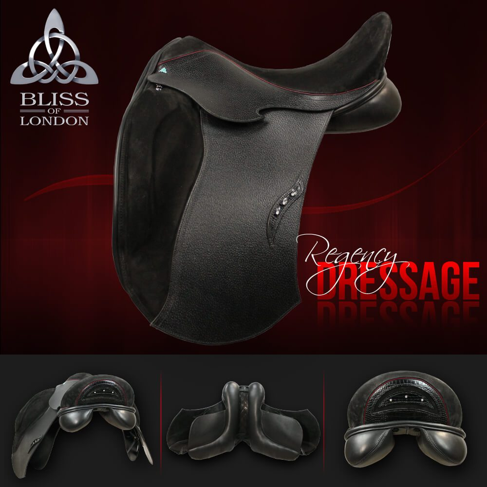 5 Bliss REGENCY DRESSAGE 15464 FB AD