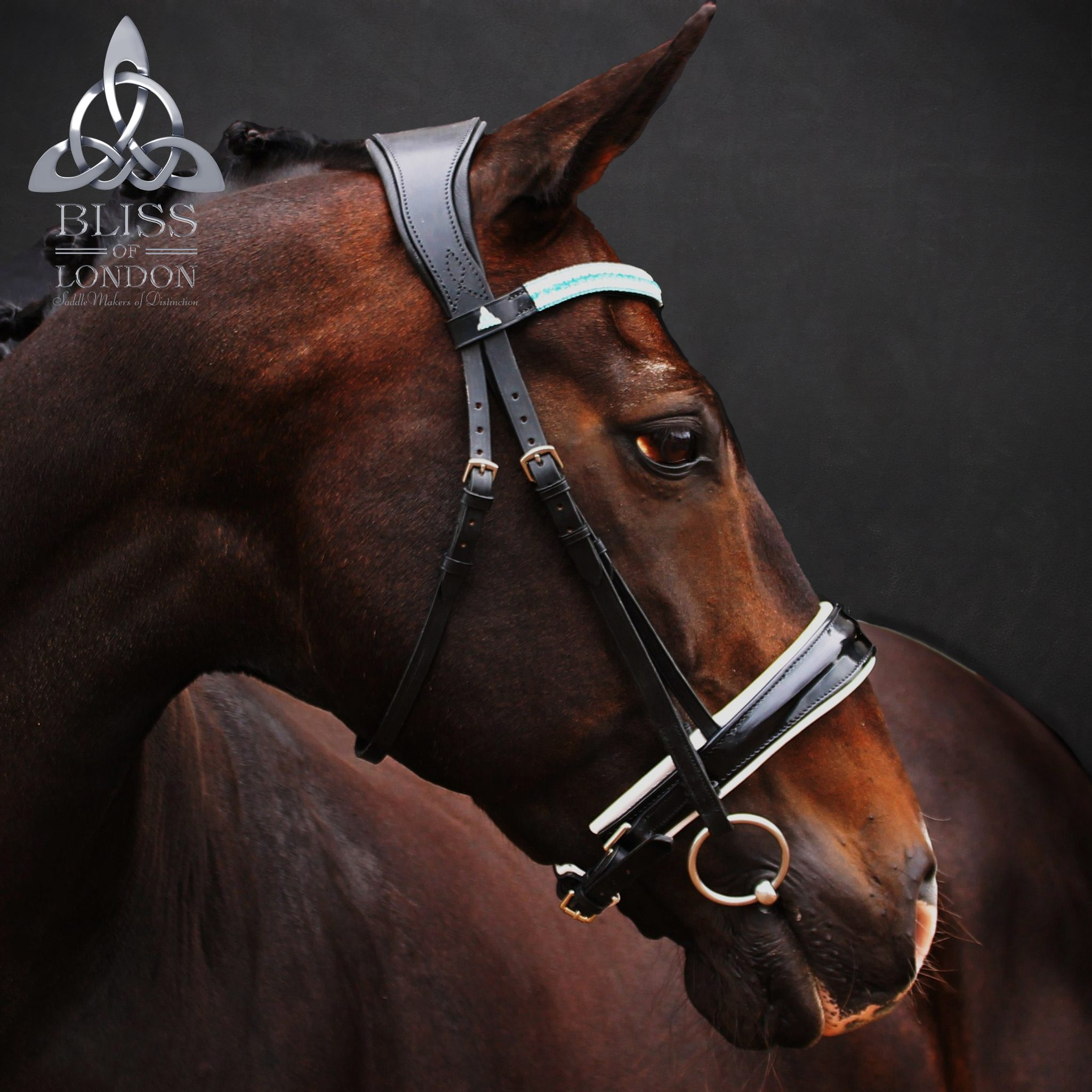 Loxley Allegro Crank Bridle Rambo Bliss Bling Browband