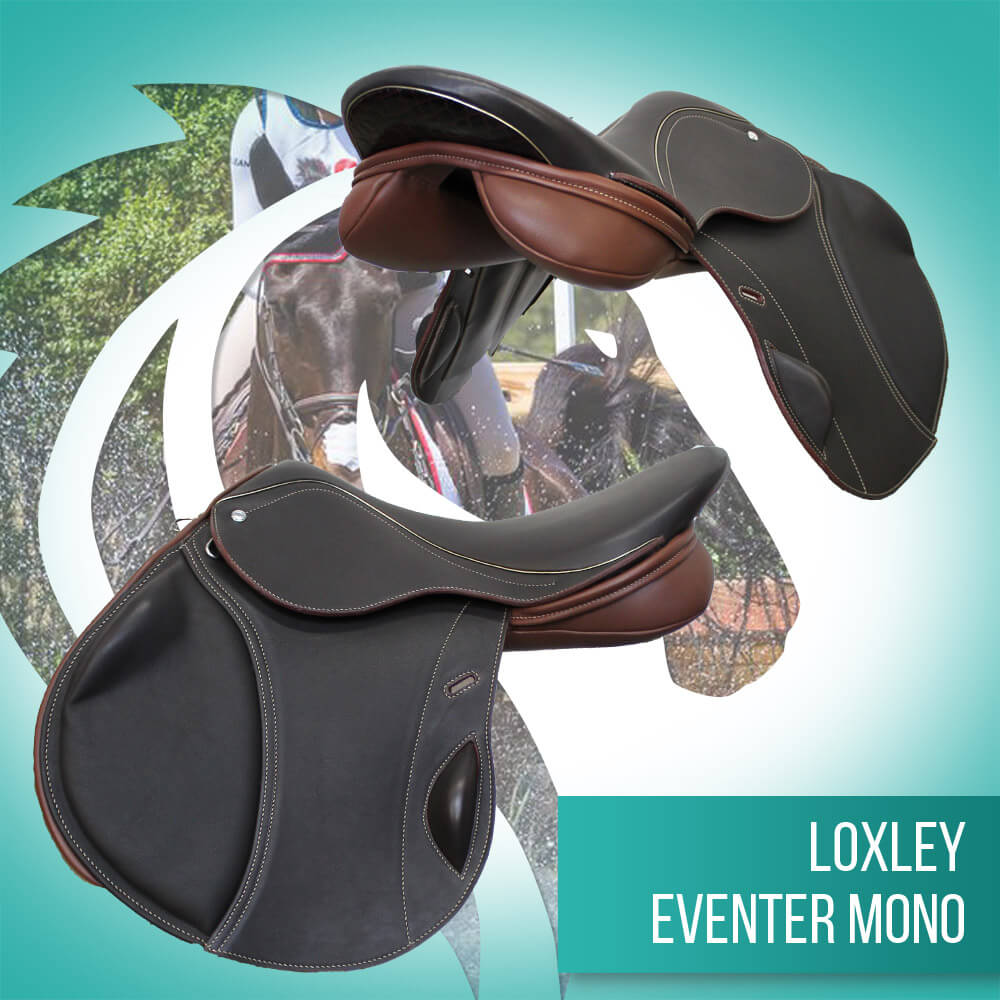 eventer mono - cocoa, claret & gold