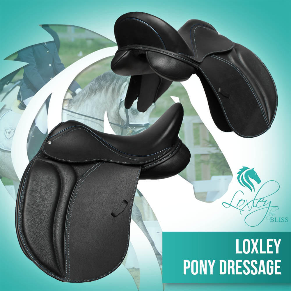 19394 - Lox pony dressage black and blue narrow flap and cantle FB