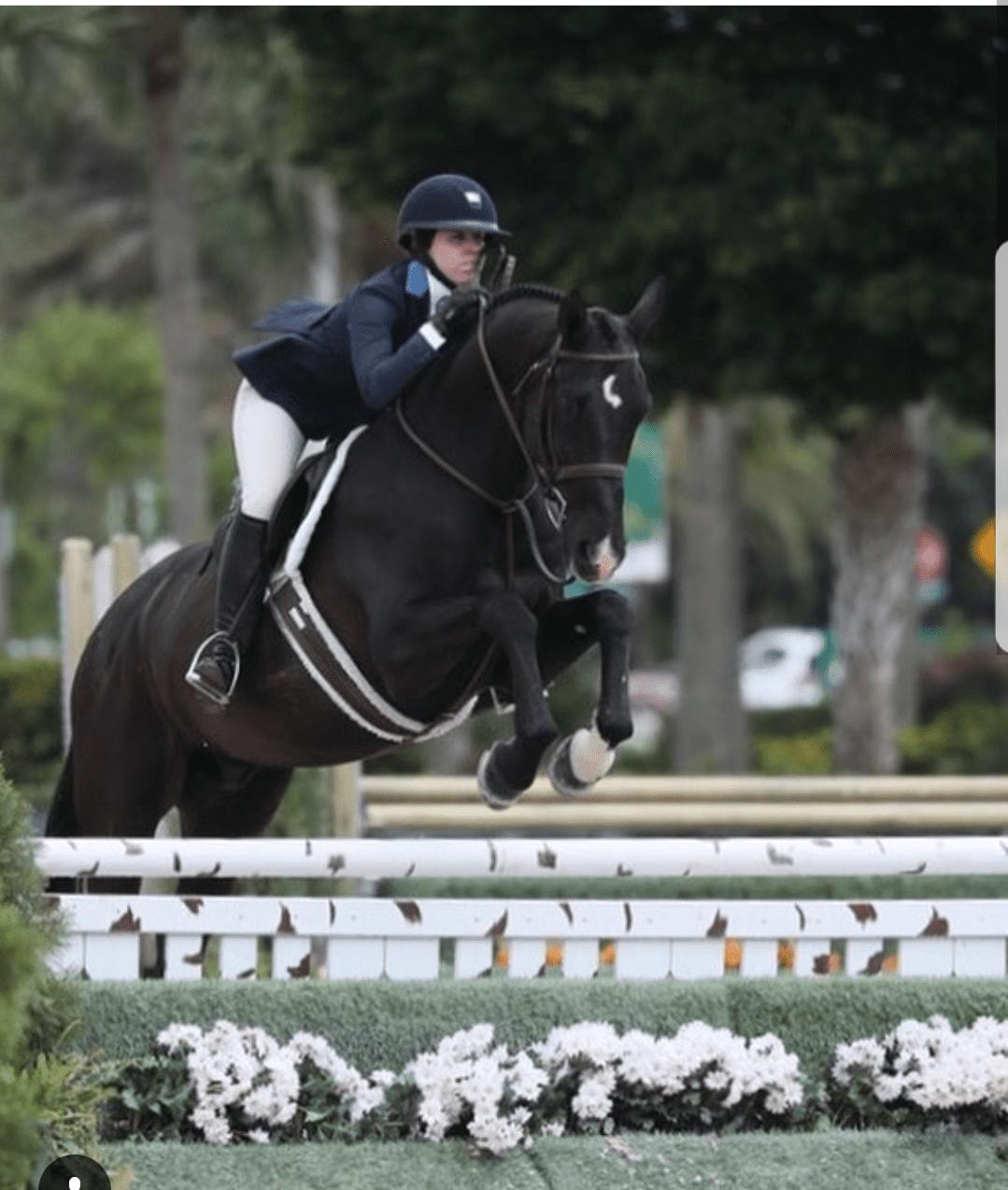 Hunter Jump saddle