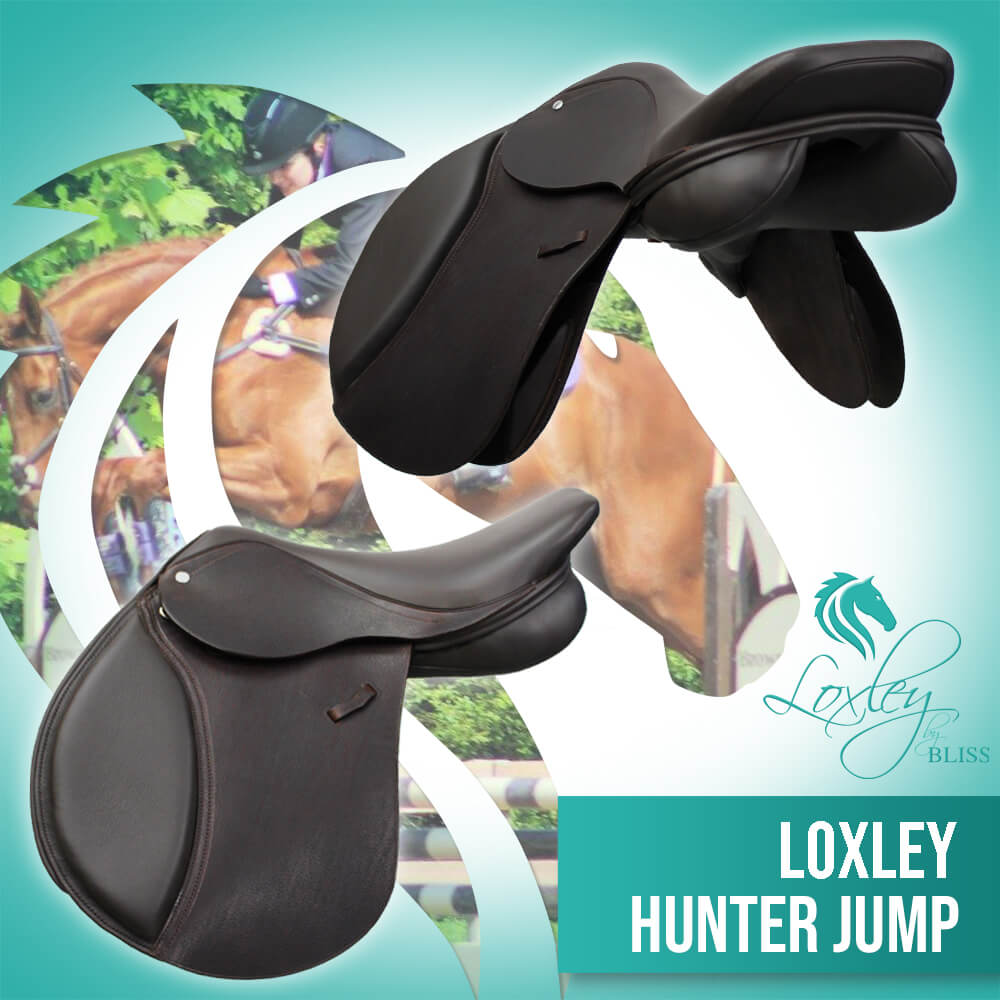 Loxley Hunter Jump Cocoa FB AD