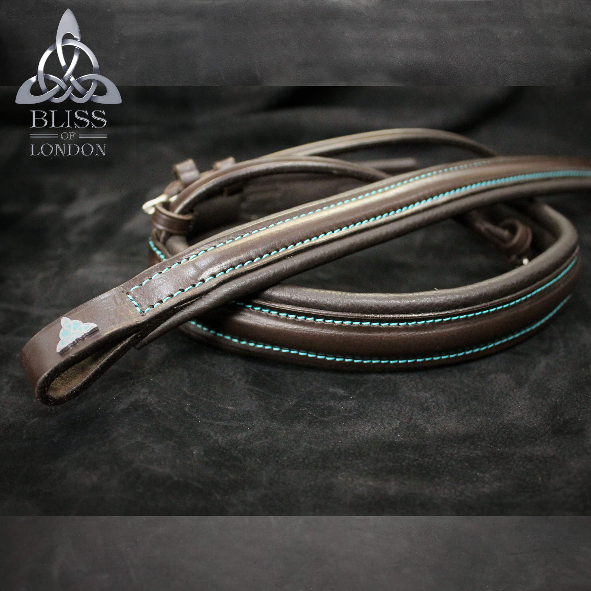 coco&teal bridle